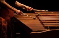 25/04/2013 Kaja Farszky : Izlog zvuka udaraljki u 80ima ( program: Sueyoshi, Smith, Globokar, Rzewski, Xenakis) @ Polukružna dvorana &TD-a